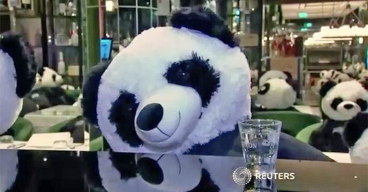不满关门政策 德餐馆老板请大熊猫入座抗议